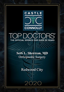 Seth L Sherman MD Award